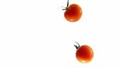 Tomaten fallen ins Wasser