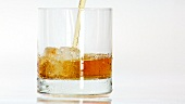 Whisky in ein Glas mit einem Eiswürfel gießen