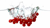 Rote Johannisbeeren fallen ins Wasser