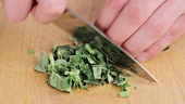 Finely chopping oregano leaves