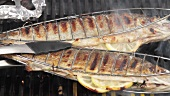 Trout being grilled in fish baskets