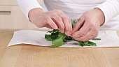 Parsley being patted dry and leaves being removed