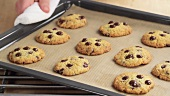 Frisch gebackene Chocolate Chip Cookies