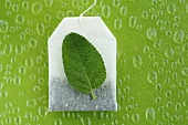 Tea bag and sage leaf, close-up