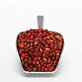 Fresh red pepper in scoop, close-up