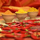 Curry powder, turmeric and chilli powder with red chillies