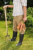 Man holding fresh carrots and fork in garden