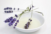 Lavender flowers in ceramic dish
