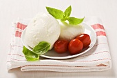 Mozzarella with basil leaves and tomatoes