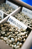 Various types of coffee in type case