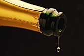 Sparkling wine dripping out of bottle
