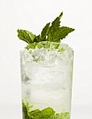 Mojito on the Rocks with Mint