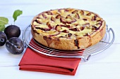 Plum tart on cake rack