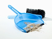 Dustpan and brush with floor sweepings