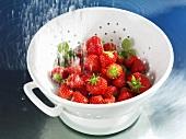 Washing strawberries in colander