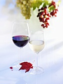 Glass of white wine, glass of red wine, autumn leaf & grapes