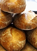 Freshly Baked Parisienne Bread Loaves