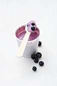Blueberry yoghurt in plastic pot with wooden spoon