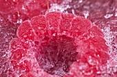 Frozen raspberry (close-up)