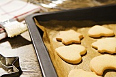 Biscuits on baking tray