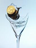Champagne cork on broken champagne glass