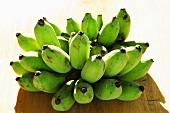 Frisch geerntete Bananen (Thailand)