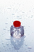 Ice cube with cherry on wet surface