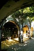 Brandy storage in oak barrels in the Bodega Gonzalez Byass