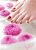 Fuß mit roten Zehennägeln über einer Wasserschüssel,Blüten im Wasser