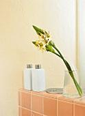 Ablagefläche hinter dem Wand WC, daruf Blumen und Flaschen