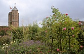 Pink roses on plant at Sissinghurst Castle Garden, Sissinghurst Castlein background, UK