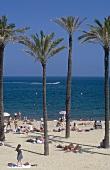 Der Palmenstrand am Sporthafen von Barcelona mit Touristen