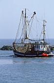 Shrimp boats at harbour on Eastside