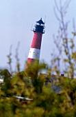 Lighthouse on eastside