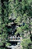 Kanarische Inseln La Palma, Caldera- Tour, Vulkanschlucht, Wanderer
