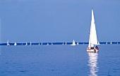 Sailboats sailing in Steinhuder Meer lake against blue sky, Germany