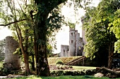 View of park overlooking ruins of Bantry Castle in Ireland