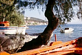 View of fishing boat overlooking village of Afissos in Pelion Peninsula, Greece