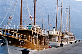 Cruising sailors moored at harbour of Korcula island, Croatia