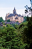 Castle of Wernigerode surrounded by greenery, Wernigerode, Germany