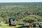 Car being droven through savannah and horizon, Namibia