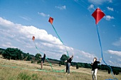 Three people standing in meadow and flying kites