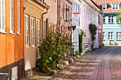 Idyllic street with colourful houses and plants in Helsingor, Denmark