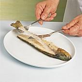 Fisch - Gegarten Fisch zerlegen, Step 3, Mittelgräte entfernen