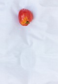 A red tomato