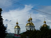 Golden domes of Nicholas Naval Cathedral in St. Petersburg, Russia