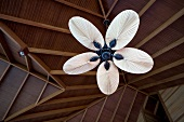 Ceiling fan in the Dhigufinolhu Island Resort, Maldives, low angle view