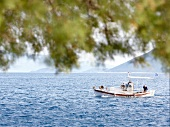 Fishing boat in sea, Eastern Magnesia, Greece