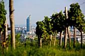 Österreich: Wien, Millennium Tower, Überblick