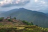 Bhutan: Überblick, Himalayagebirge, Wälder, Terrassenfelder, grün
